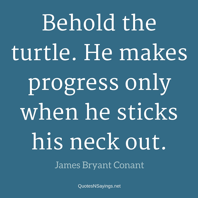 Behold the turtle. He makes progress only when he sticks his neck out. - James Bryant Conant quote