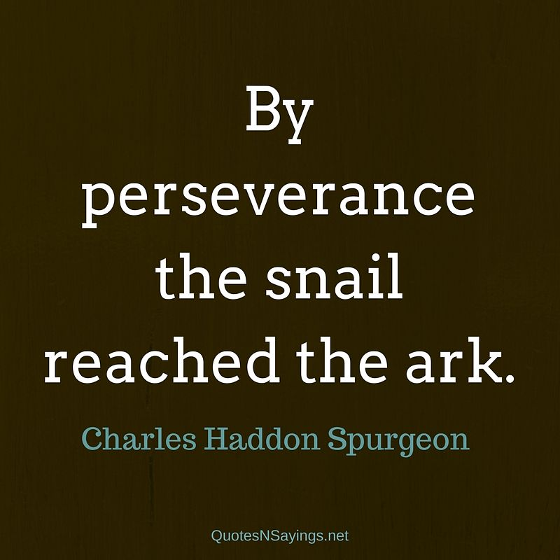 Charles Haddon Spurgeon quote - By perseverance ...