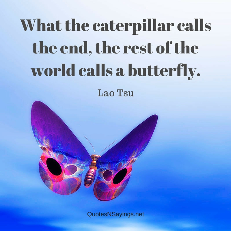 What the caterpillar calls the end, the rest of the world calls a butterfly - Lao Tsu quote
