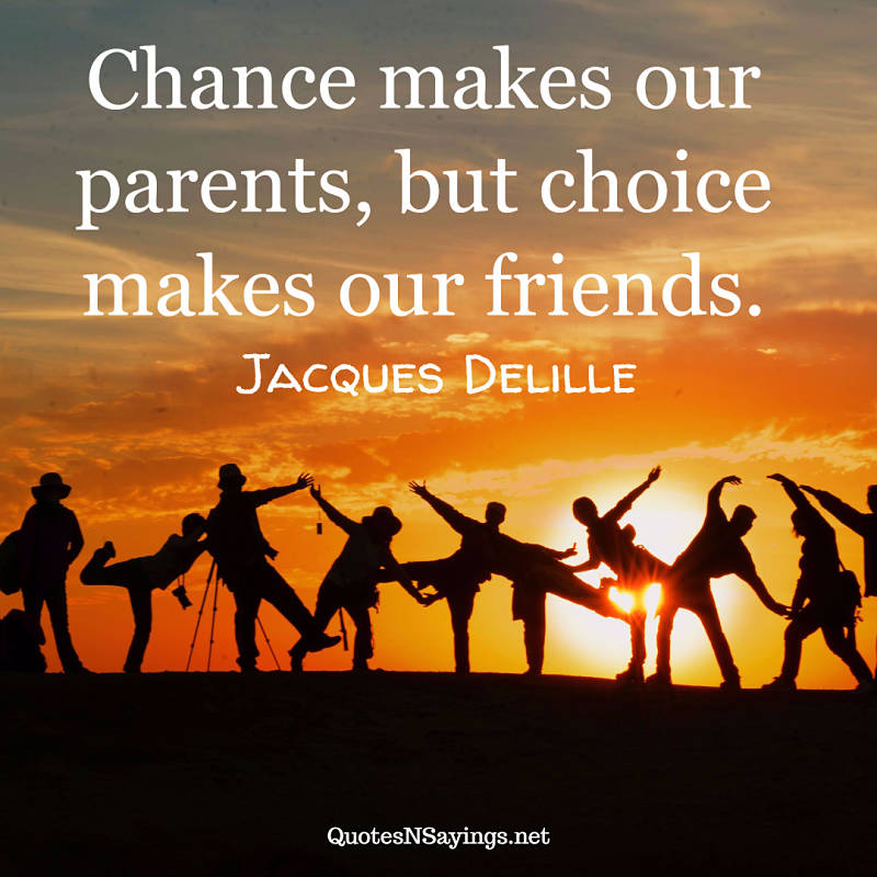 Chance makes our parents, but choice makes our friends. - Jacques Delille quote