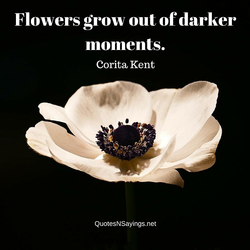 Flowers grow out of darker moments - Corita Kent picture quote