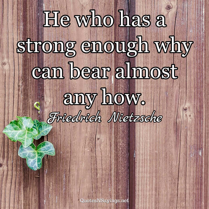 He who has a strong enough why can bear almost any how. - Friedrich Nietzsche quote