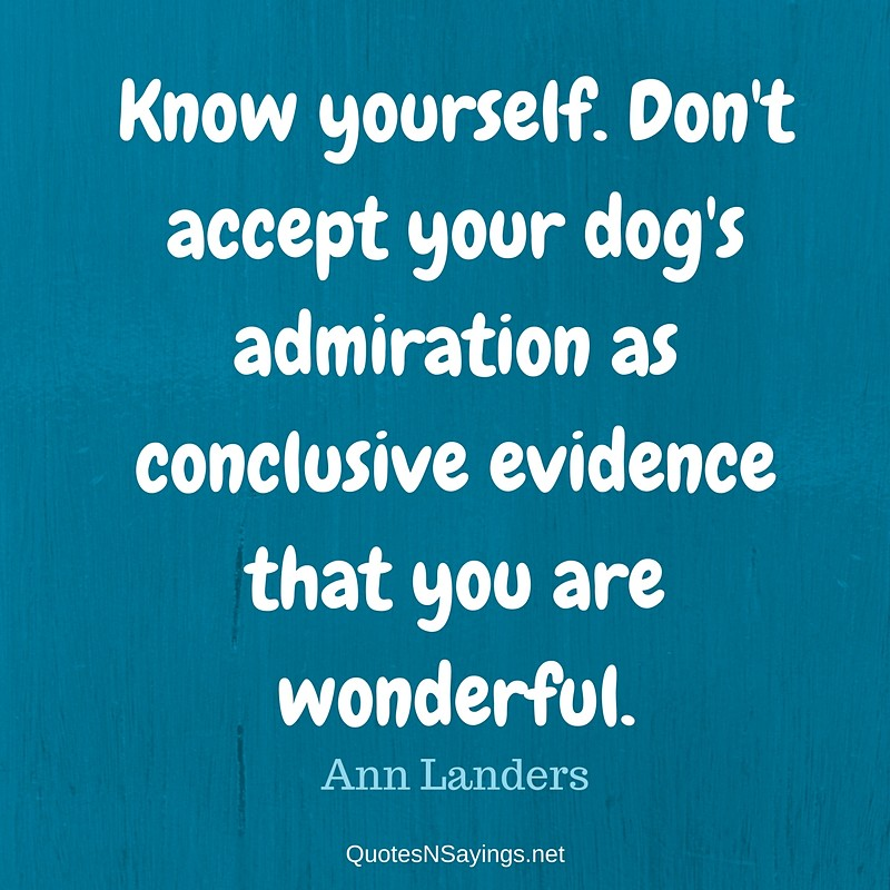 """""""Know yourself. Don't accept your dog's admiration as conclusive evidence that you are wonderful."""" - Ann Landers"""