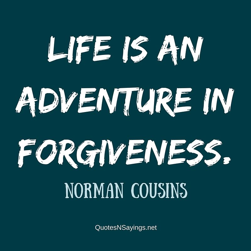 Life is an adventure in forgiveness. - Norman Cousins quote