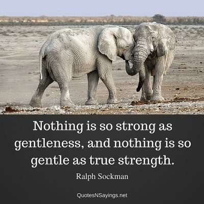 Ralph Sockman Quote – Nothing is so strong as gentleness …
