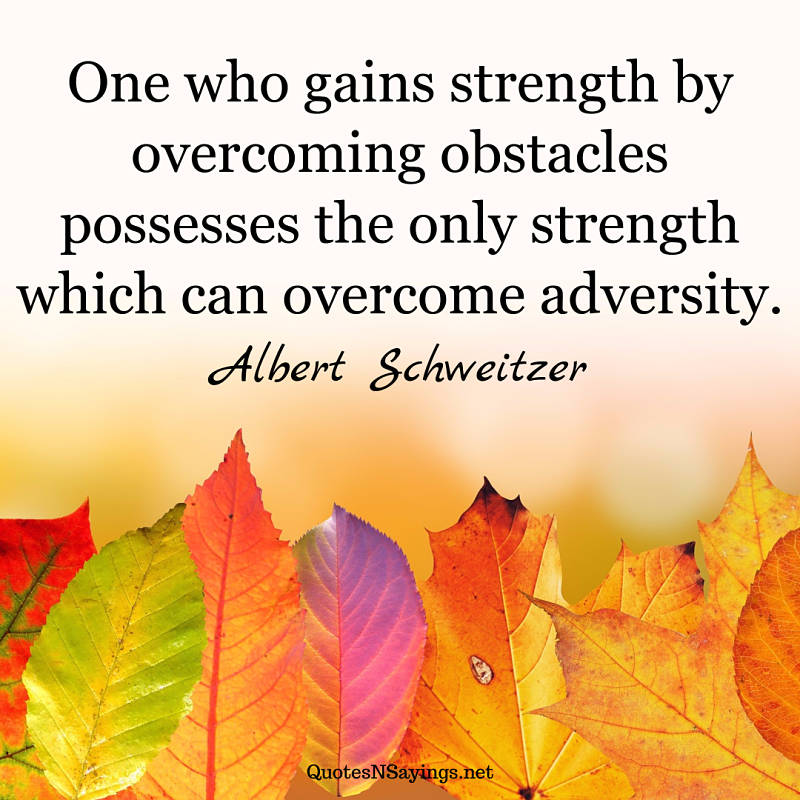 One who gains strength by overcoming obstacles possesses the only strength which can overcome adversity. - Albert Schweitzer quote
