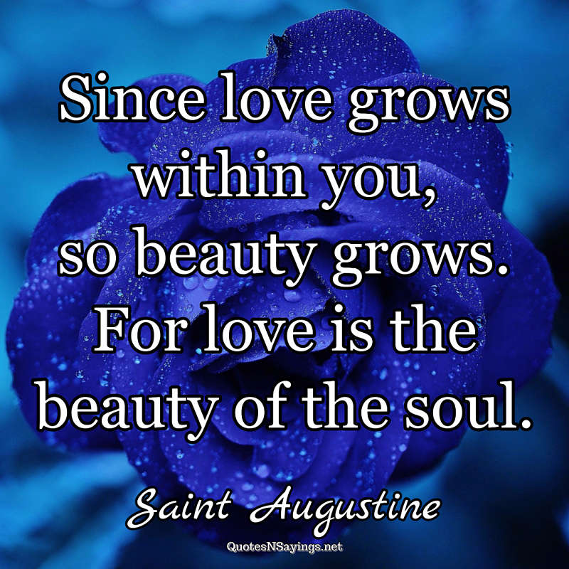 Saint Augustine quote - Since love grows within you ...