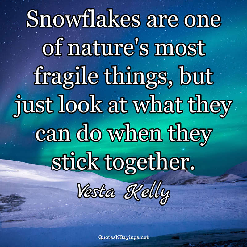 Vesta Kelly quote - Snowflakes are one ...