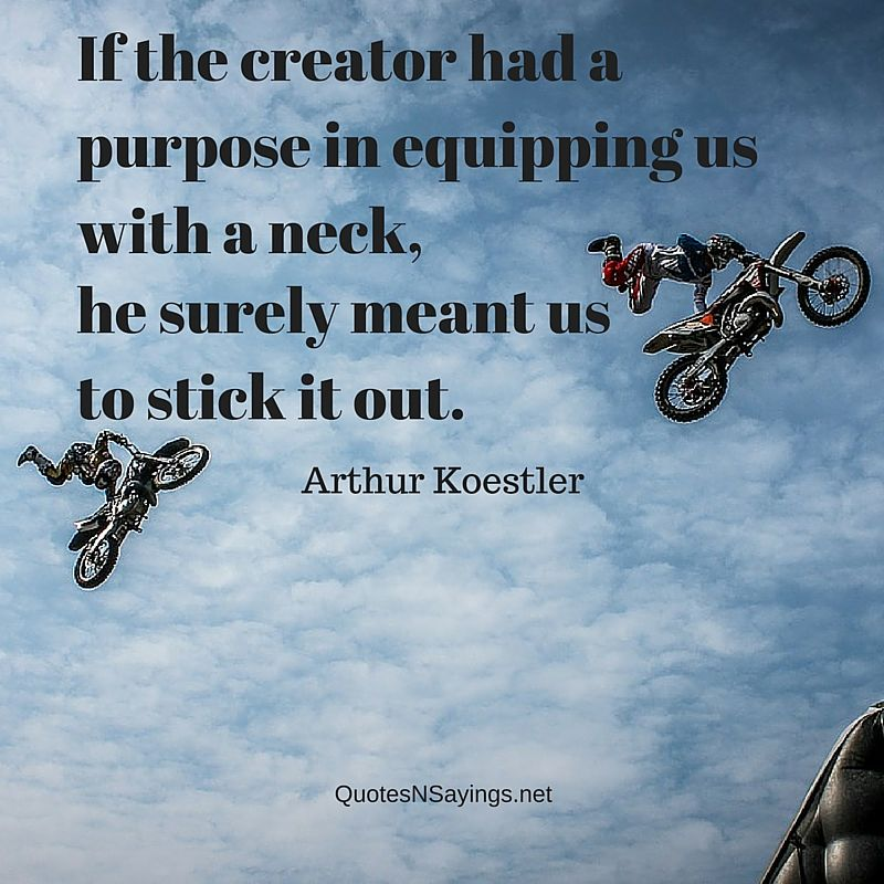 If the creator had a purpose in equipping with us with a neck, he surely meant us to stick it out - Arthur Koestler quote