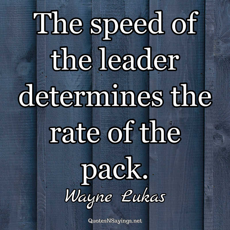 The speed of the leader determines the rate of the pack. - Wayne Lukas quote