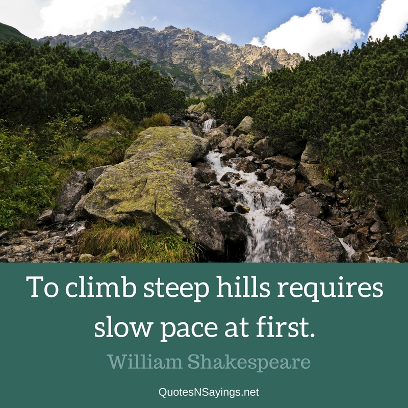 To climb steep hills requires slow pace at first. - William Shakespeare quote