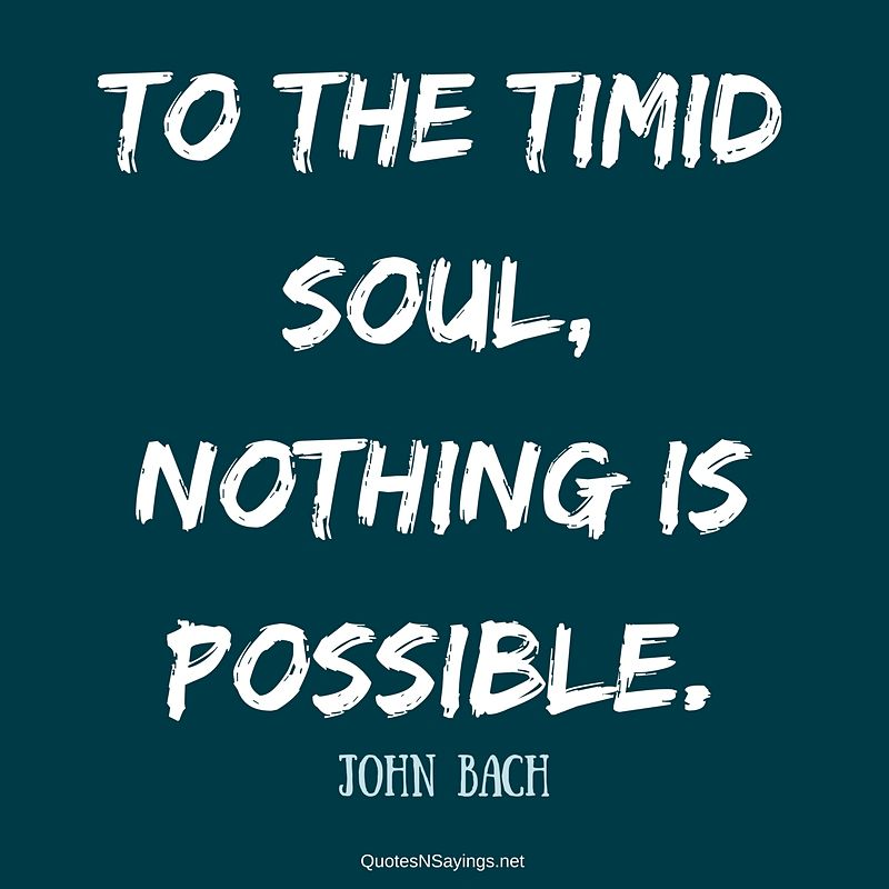 John Bach quote - To the timid soul ...