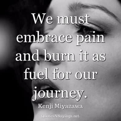 Kenji Miyazawa – We must embrace pain …