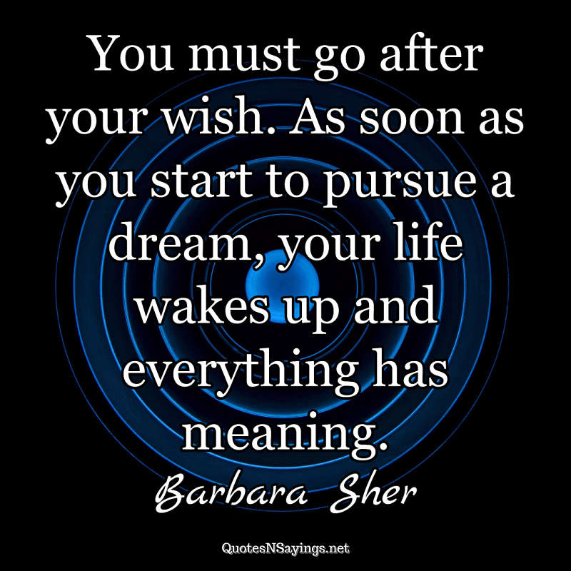 You must go after your wish. As soon as you start to pursue a dream, your life wakes up and everything has meaning. - Barbara Sher quote