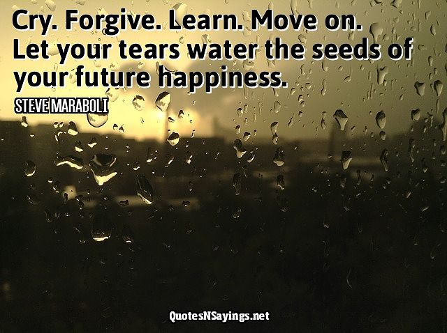 Cry. Forgive. Learn. Move on. Let your tears water the seeds of your future happiness ~ Steve Maraboli quote