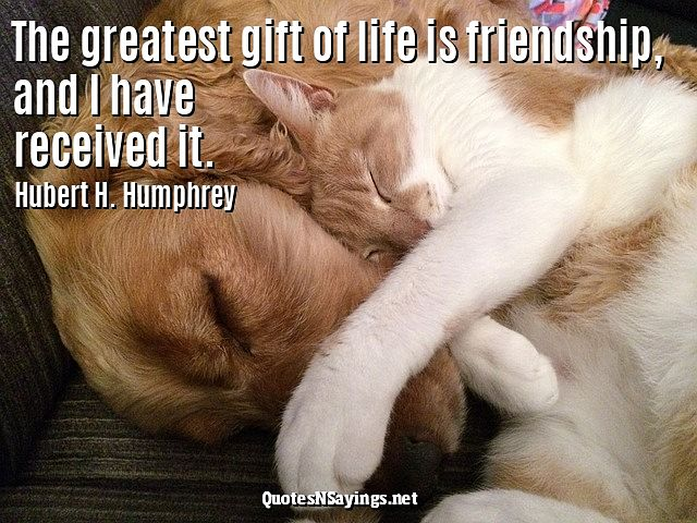 The greatest gift of life is friendship and I have received it - Hubert H. Humphrey quote