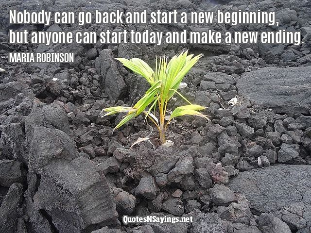 Nobody can go back and start a new beginning, but anyone can start today and make a new ending ~ Maria Robinson quote about moving on