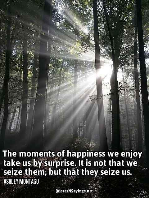 The moments of happiness we enjoy take us by surprise. It's not that we seize them, but that they seize us - Ashley Montagu quote