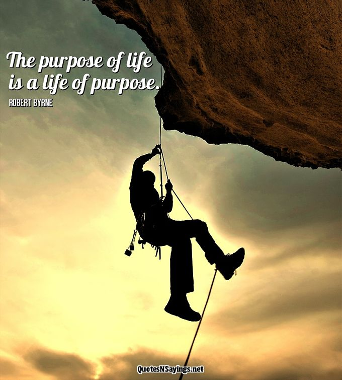 The purpose of life is a life of purpose - Robert Byrne quote