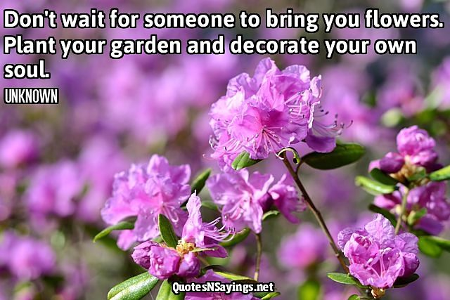 Don't wait for someone to bring you flowers. Plant your garden and decorate your own soul - Anonymous quote