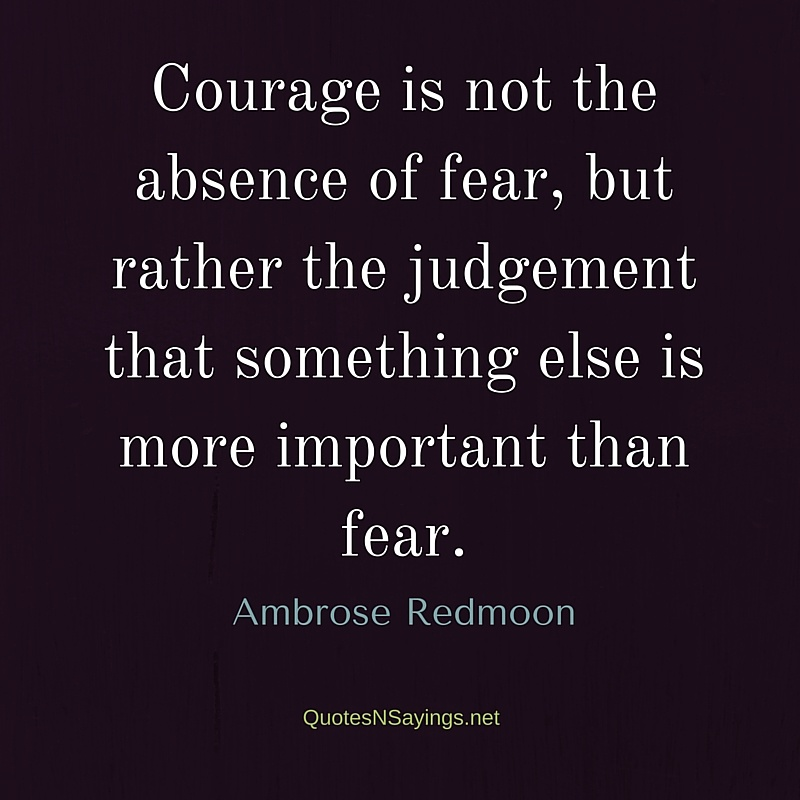 Courage is not the absence of fear, but rather the judgement that something else is more important than fear - Ambrose Redmoon quote