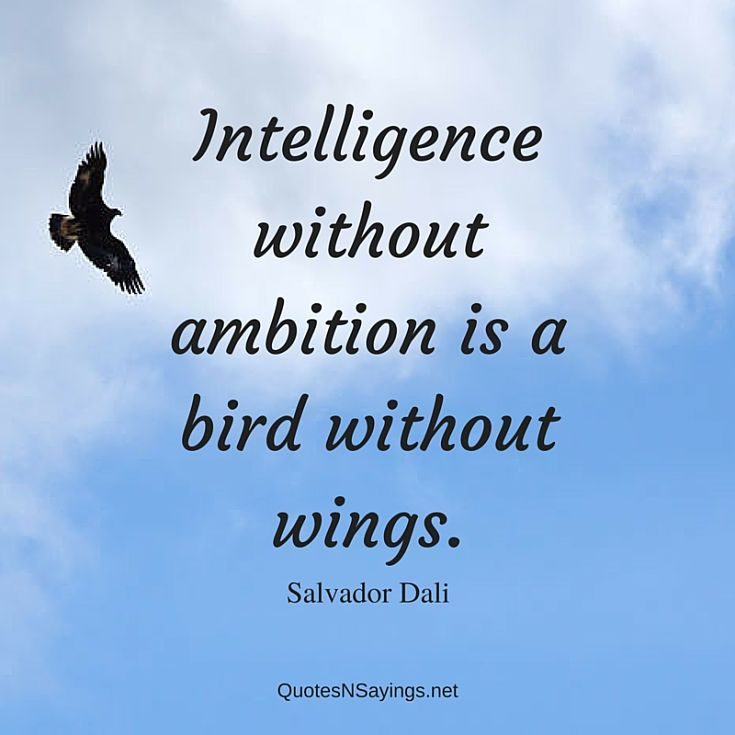 Intelligence without ambition is a bird without wings ~ Salvador Dali quote