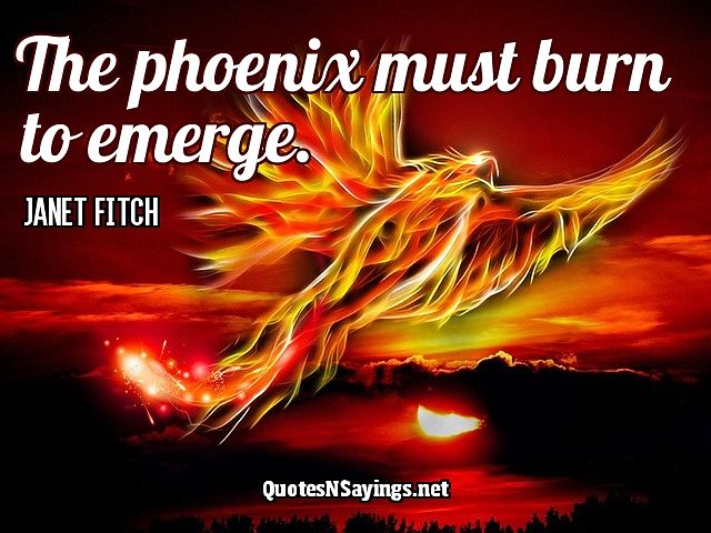 The Phoenix Must Burn Quote - Janet Fitch