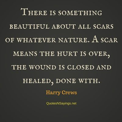 Harry Crews Quote – There is something beautiful …