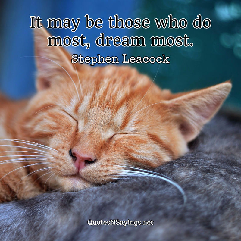 It may be those who do most, dream most. - Stephen Leacock quote