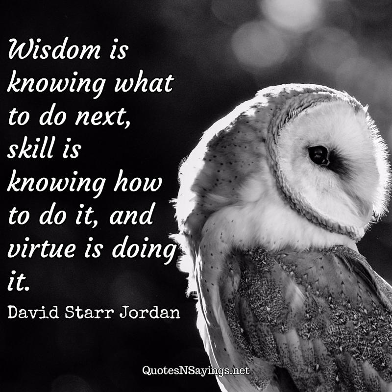 Wisdom is knowing what to do next, skill is knowing how to do it, and virtue is doing it. - David Starr Jordan quote