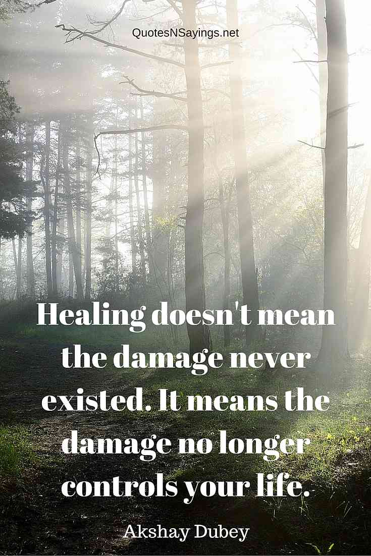 Healing Doesn't Mean The Damage Never Existed - Akshay Dubey Healing Quote