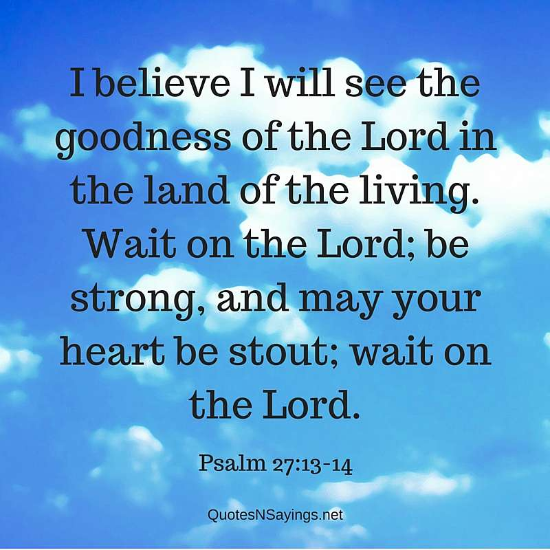 I believe I will see the Lord - Psalm 27:13-14