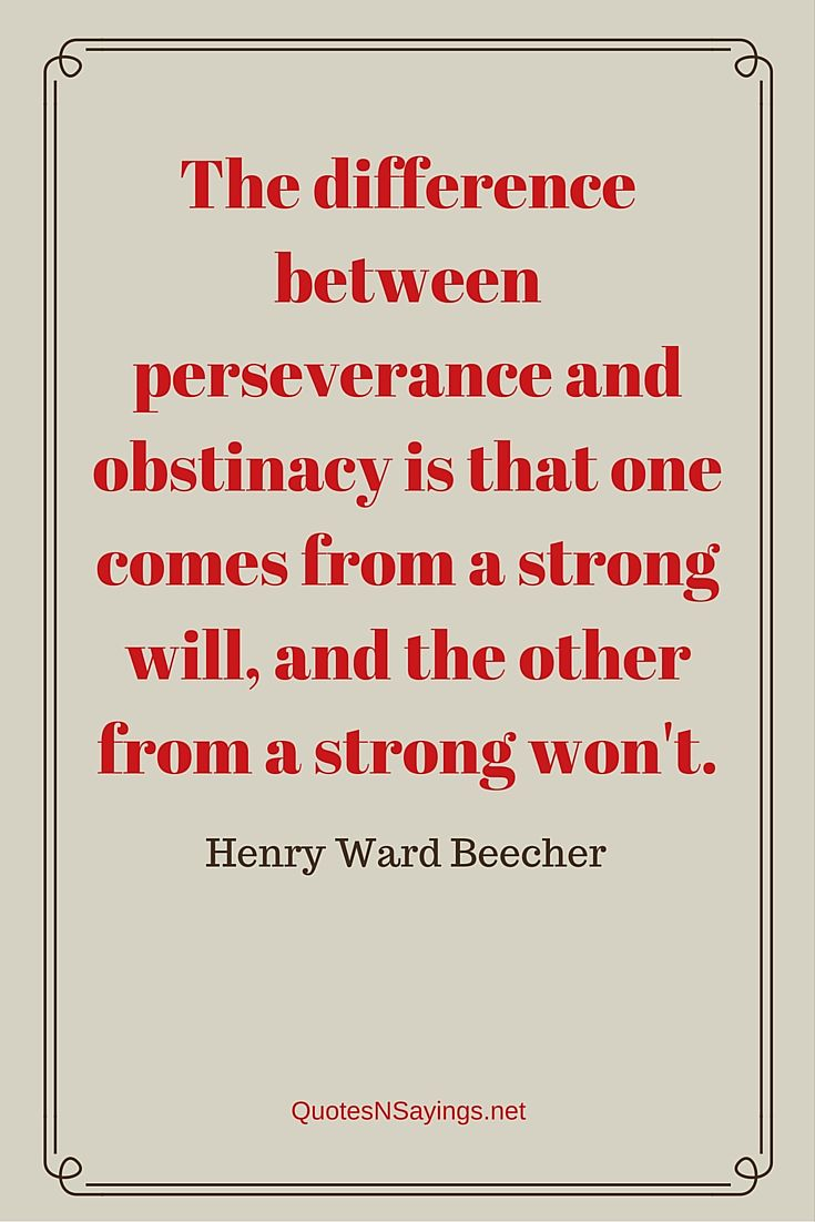 The difference between perseverance and obstinacy is that one comes from a strong will, and the other from a strong won't - Henry Ward Beecher quote