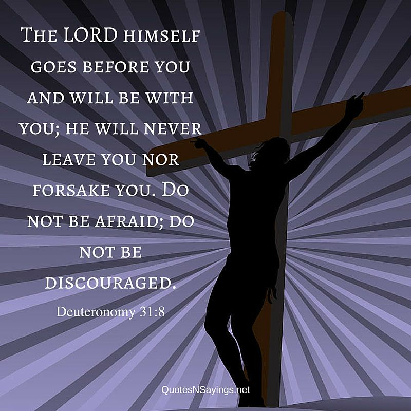 Scriptures on comfort : The LORD himself goes before you and will be with you; he will never leave you nor forsake you. Do not be afraid; do not be discouraged. ~ Deuteronomy 31:8