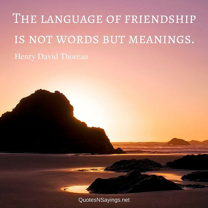 The language of friendship is not words but meanings – Henry David Thoreau quote