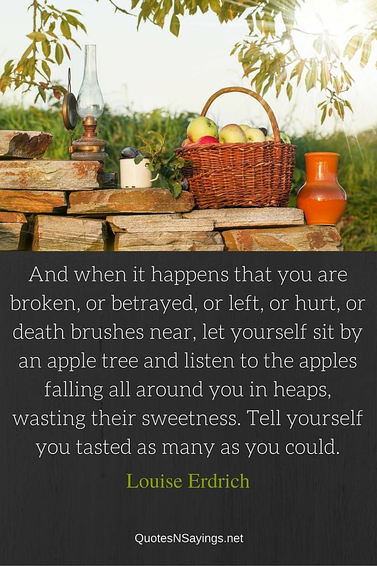 And when it happens that you are broken, or betrayed, or left, or hurt, or death brushes near, let yourself sit by an apple tree and listen to the apples falling all around you in heaps, wasting their sweetness. Tell yourself you tasted as many as you could ~ Louise Erdrich