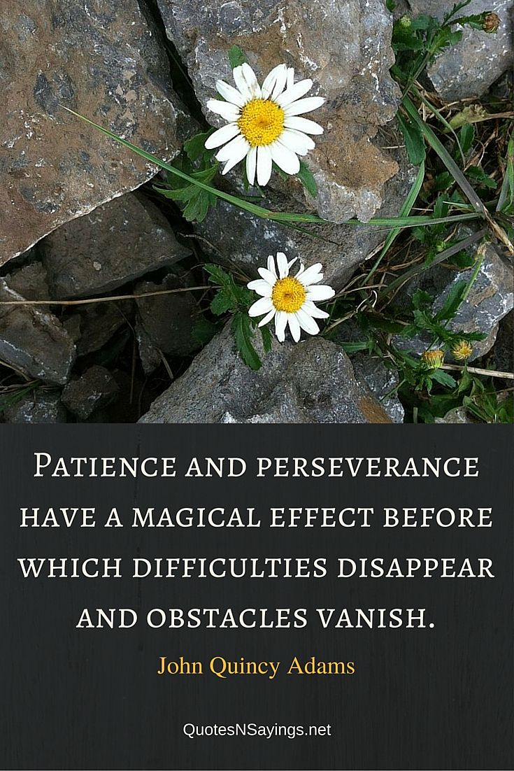 Patience and perseverance have a magical effect before which difficulties disappear and obstacles vanish. ~ John Quincy Adams quote