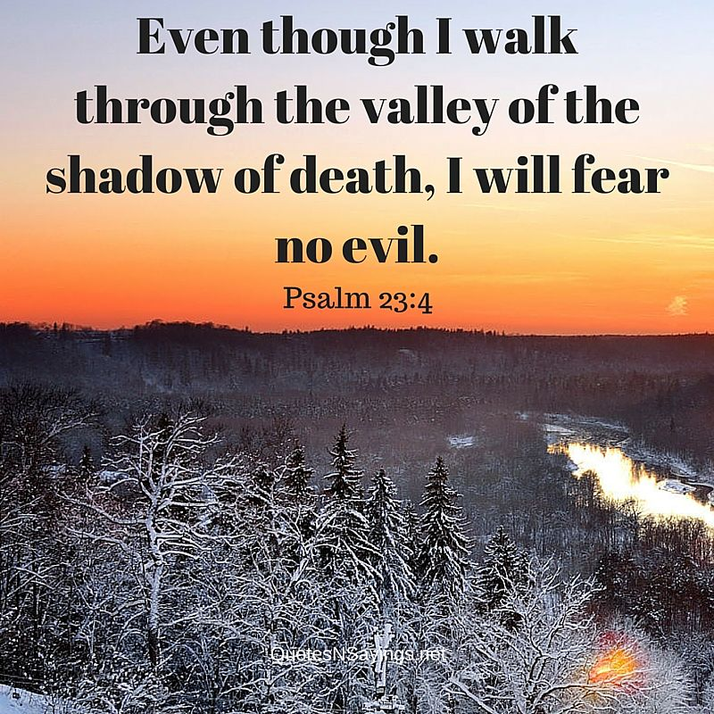 Even though I walk through the valley of the shadow of death, I will fear no evil. - Psalm 23:4