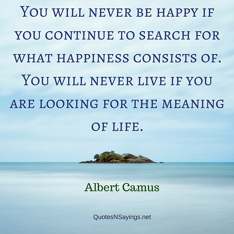 You will never be happy if you continue to search for what happiness consists of - Albert Camus quote