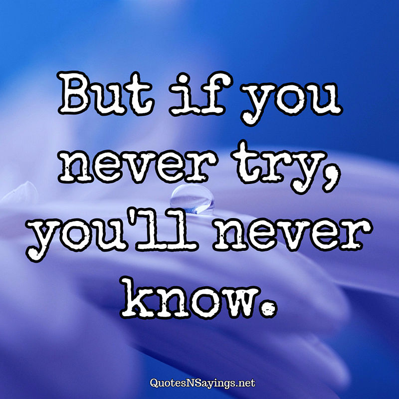 But if you never try, you'll never know. - Anonymous quote