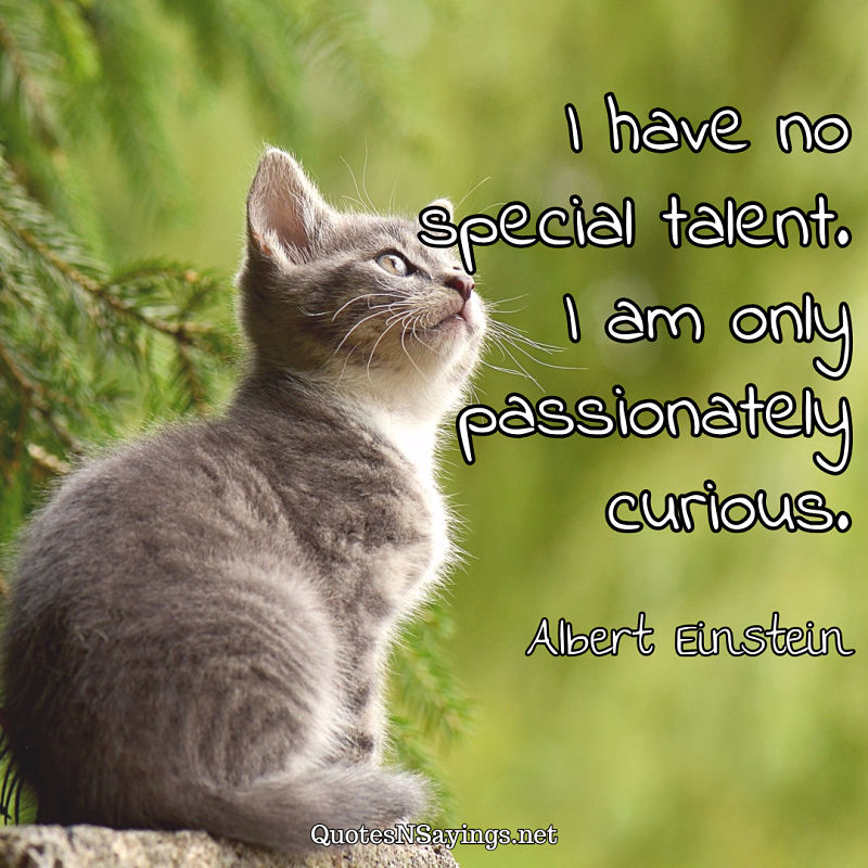 I have no special talent. I am only passionately curious. - Albert Einstein quote
