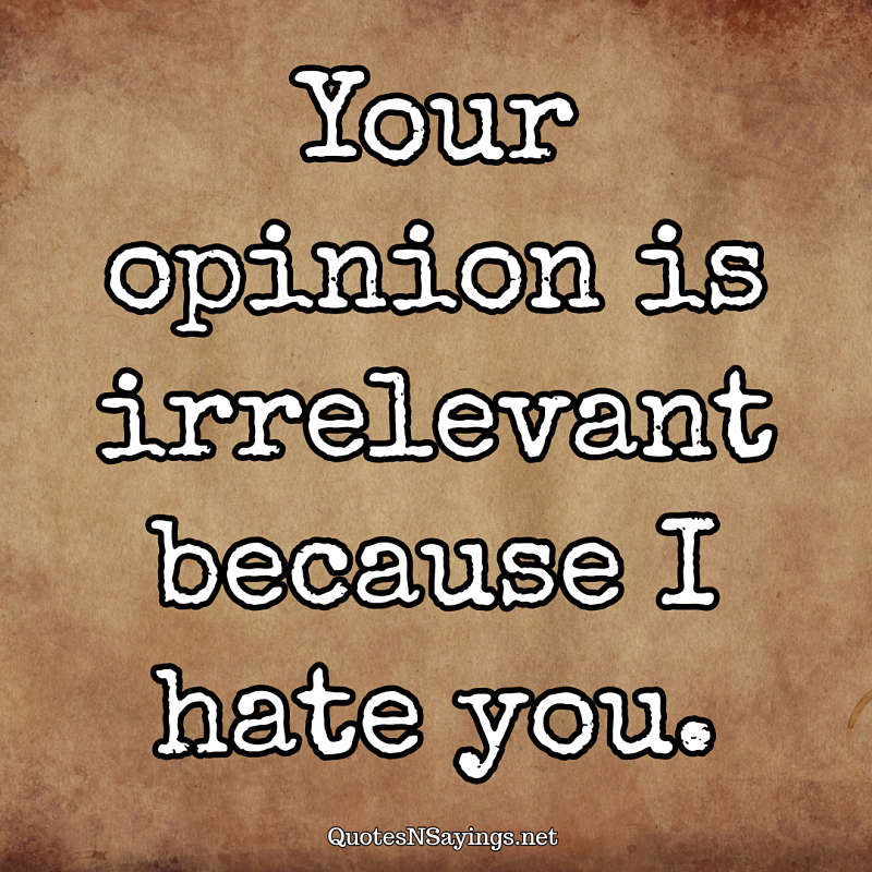 Your opinion is irrelevant because I hate you. - Anonymous quote
