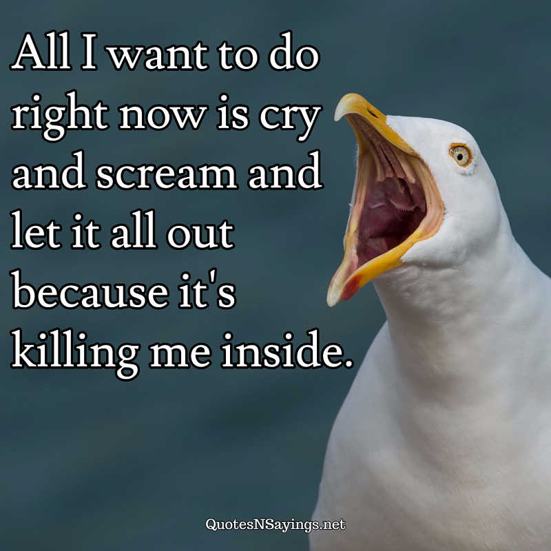 All I want to do right now is cry and scream and let it all out because it's killing me inside. - Anonymous quote