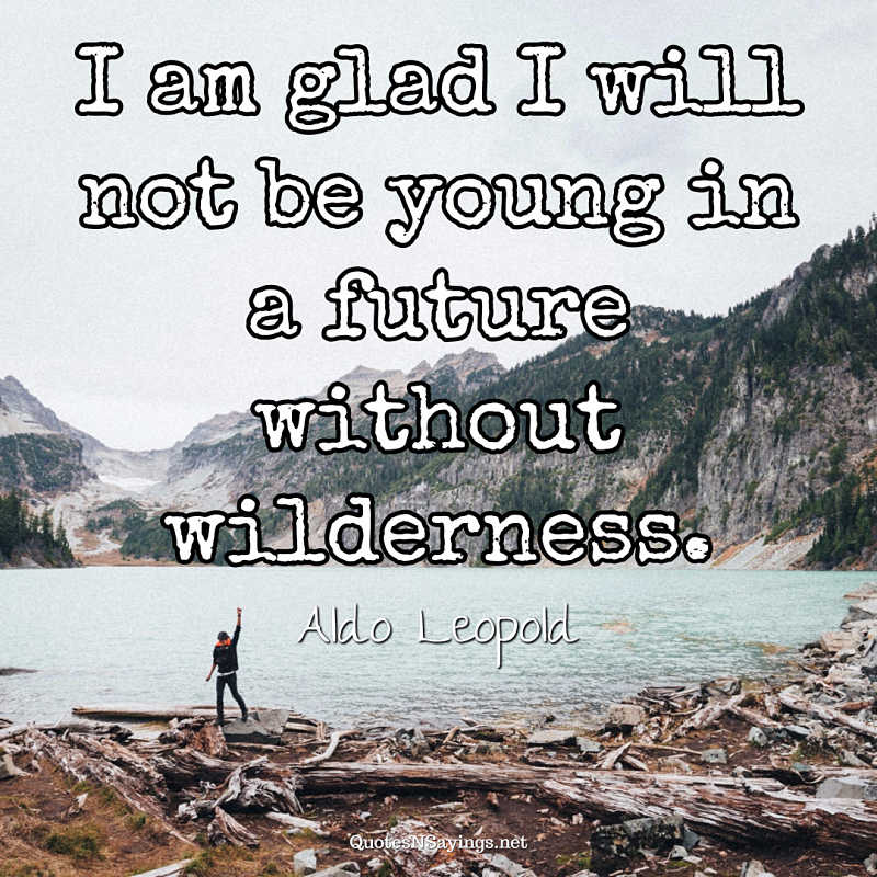 I am glad I will not be young in a future without wilderness. - Aldo Leopold quote